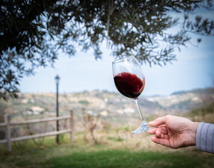 calice di vino con vista agriturismo